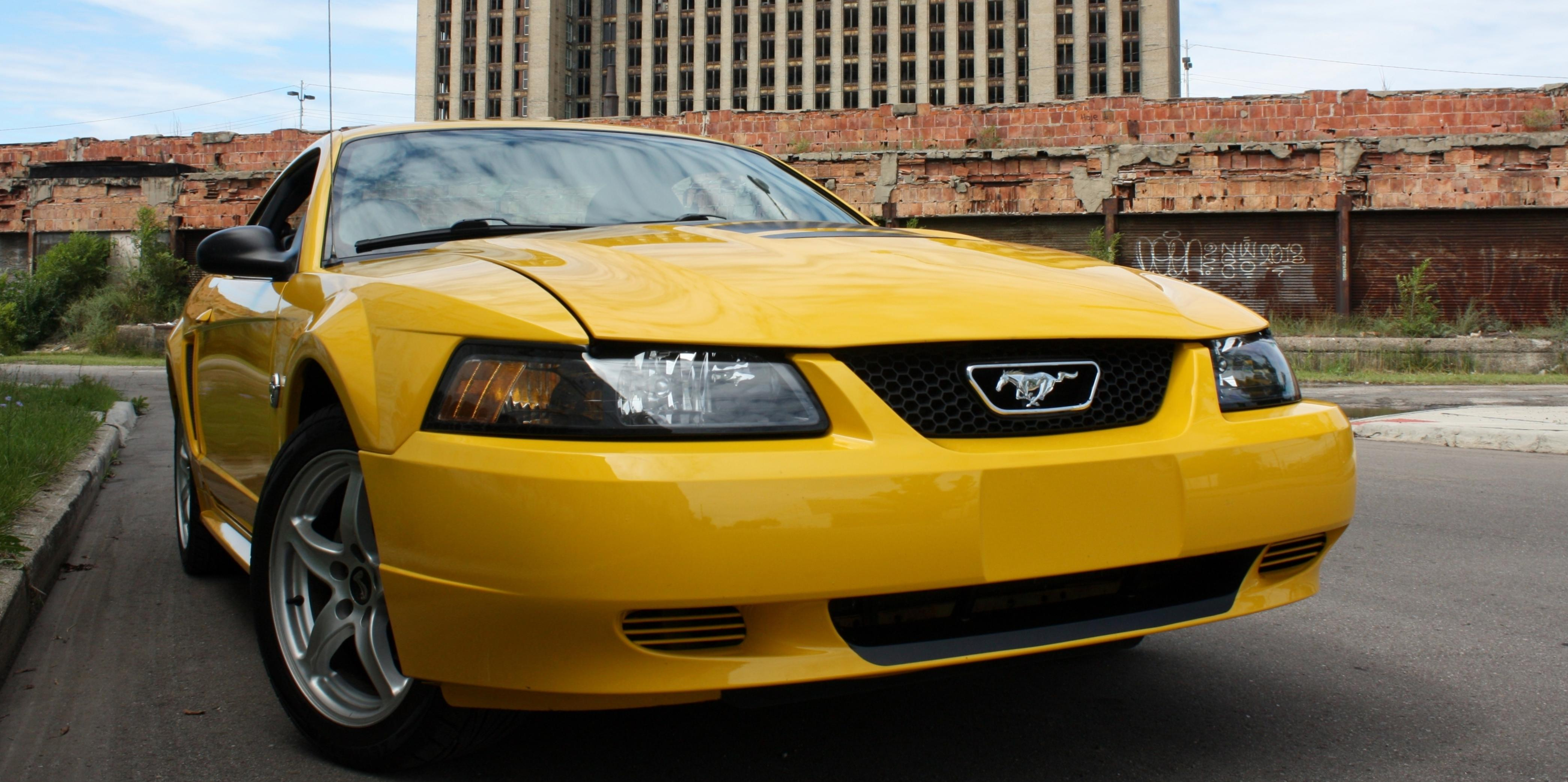 t_rog_22 2004 Ford Mustang