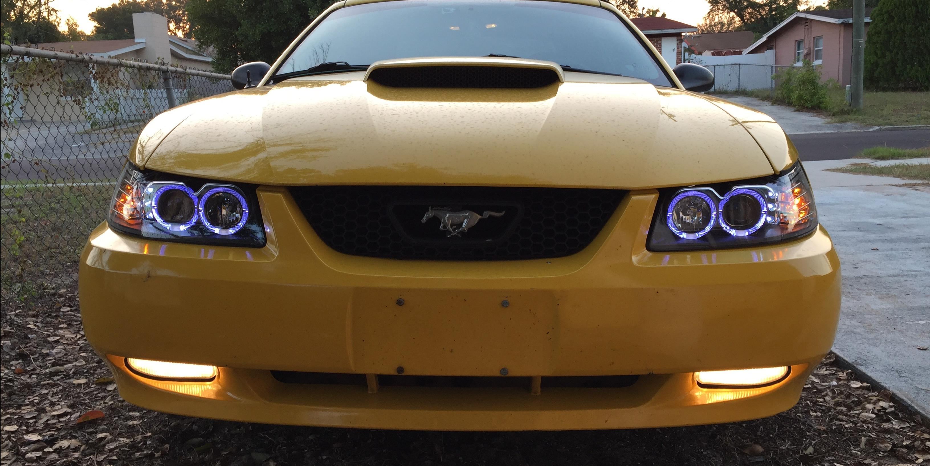 Dustawnry 2004 Ford Mustang