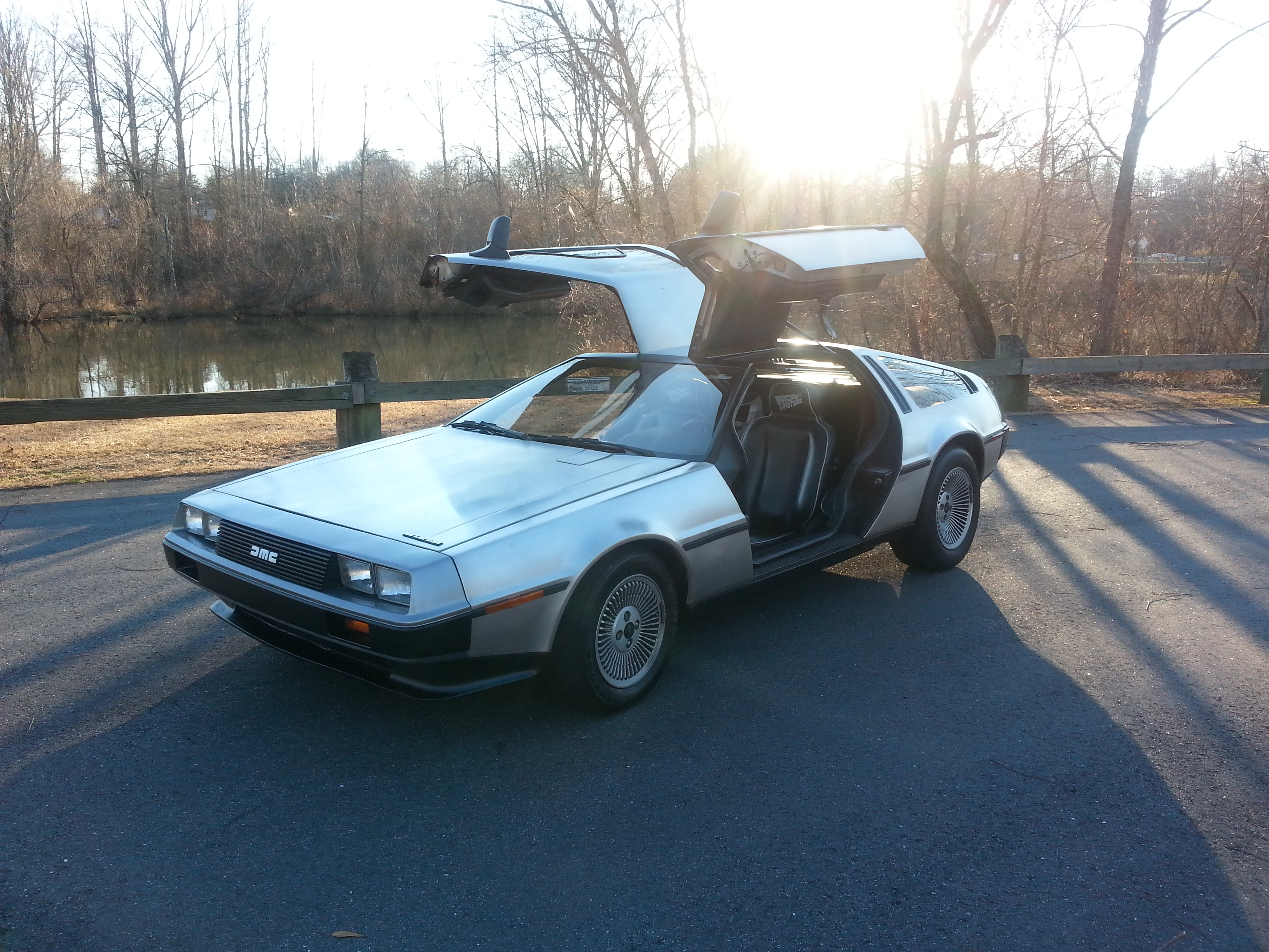 silkie 1981 DeLorean DMC-12