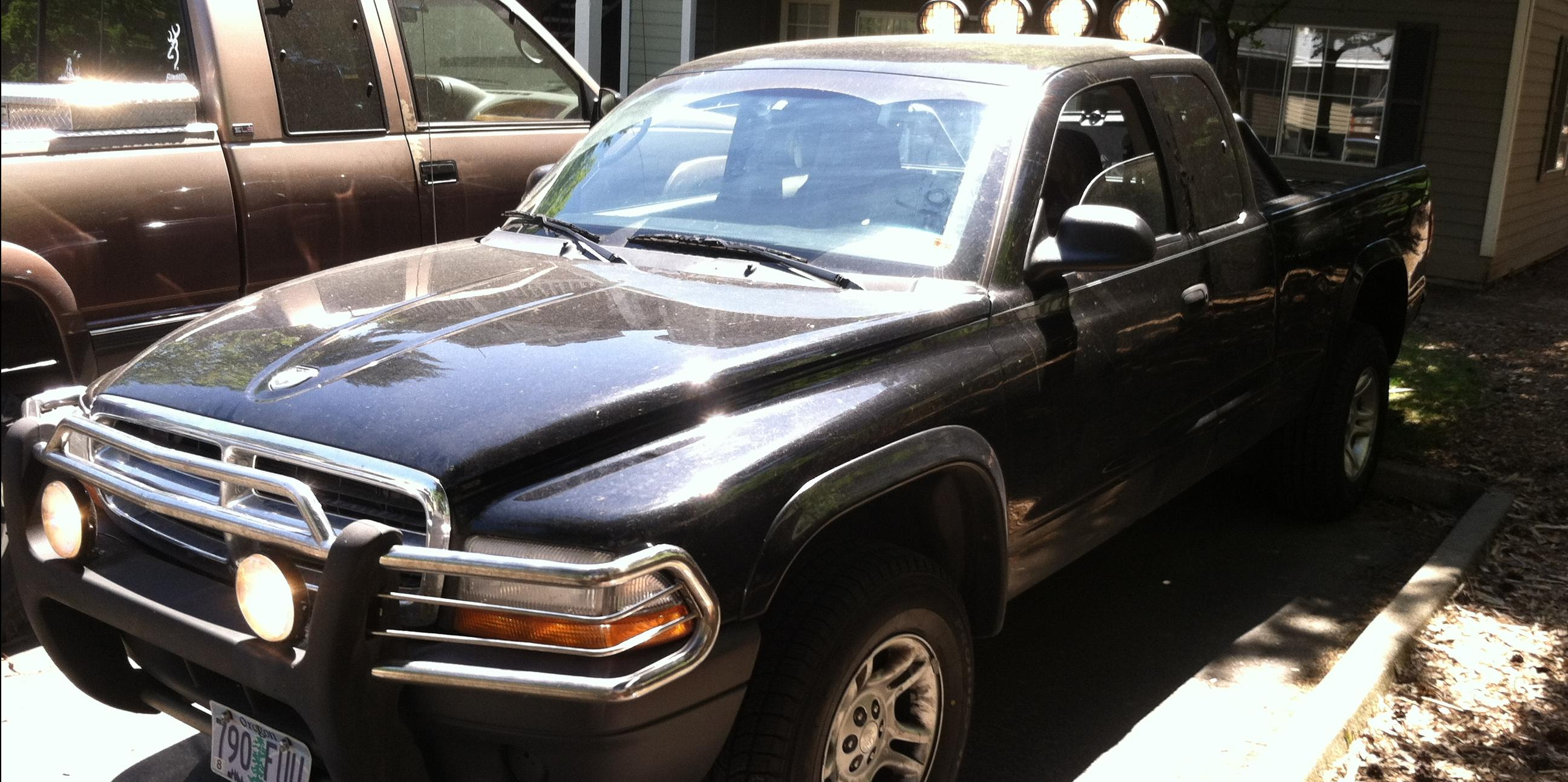 Spike0207 2004 Dodge Dakota-Quad-Cab