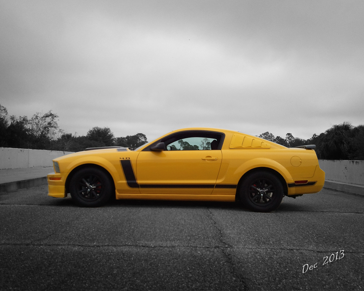 dominicus777 2005 Ford Mustang
