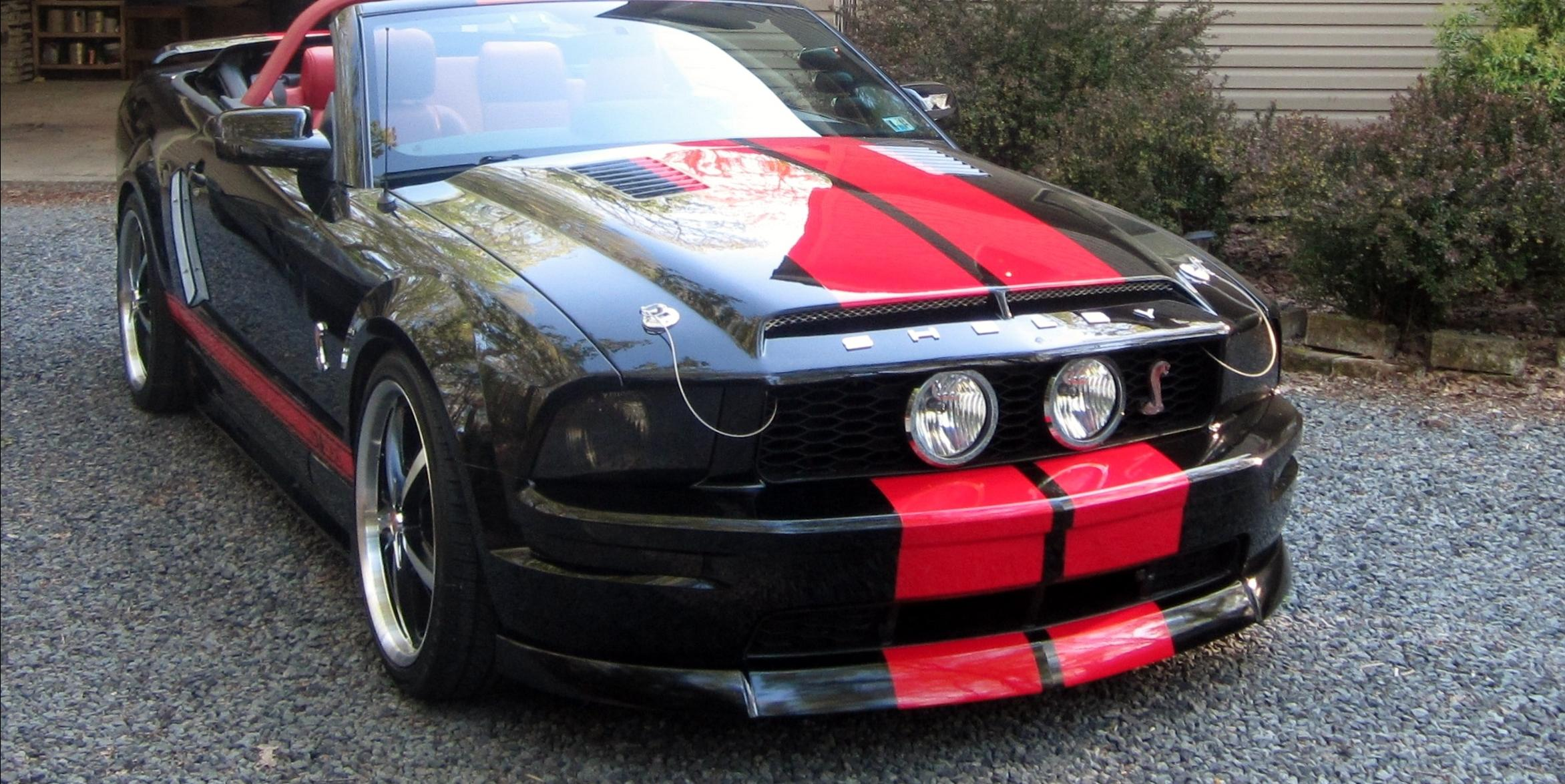 Fanatical1 2005 Ford Mustang