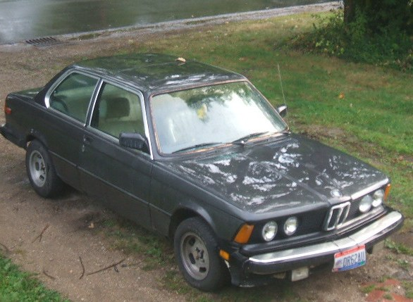 capricornetet 1981 BMW 3 Series