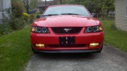 Bubba-Rodge 2004 Ford Mustang