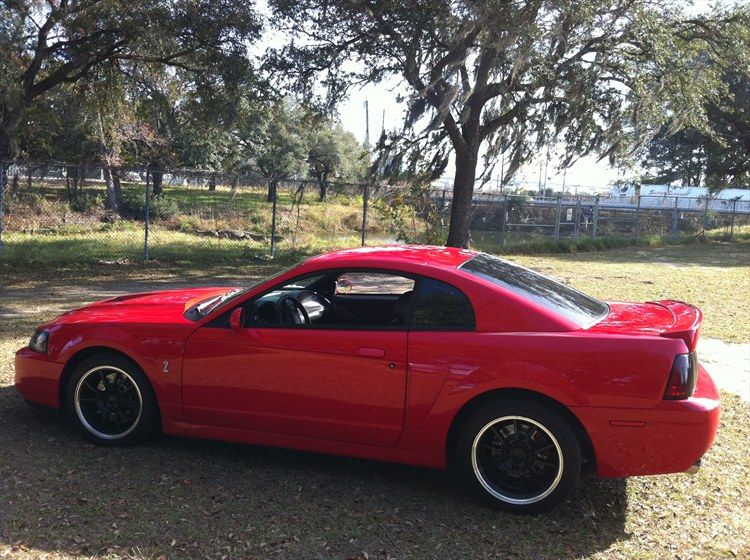 Another cwheeler 2003 Ford Mustang post... - 15467049