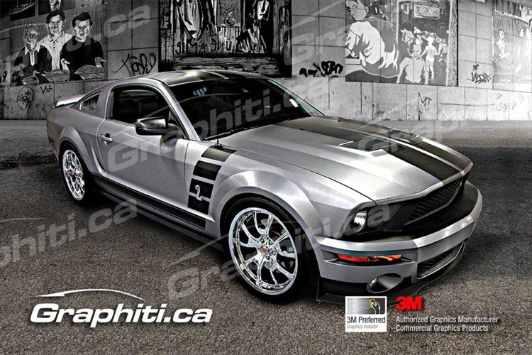 Graphiti 2009 Shelby GT500