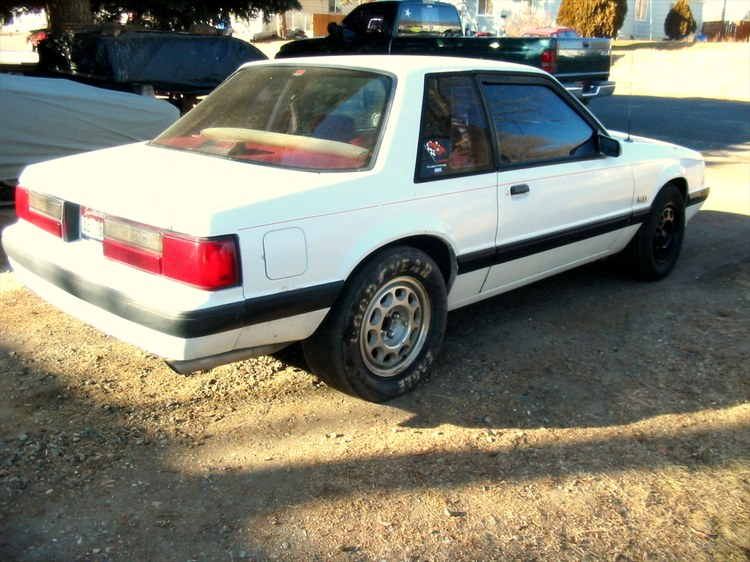 Casey1988 1988 Ford Mustang