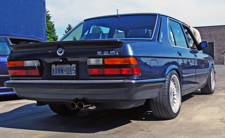 ALPINAMAN 1983 BMW 5 Series 18850112
