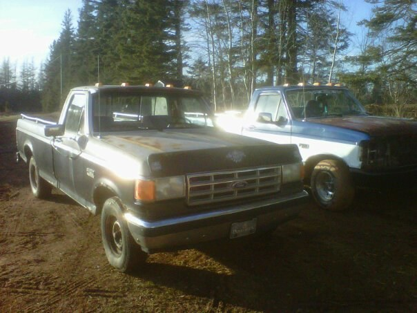 1987 Ford F150 Regular Cab