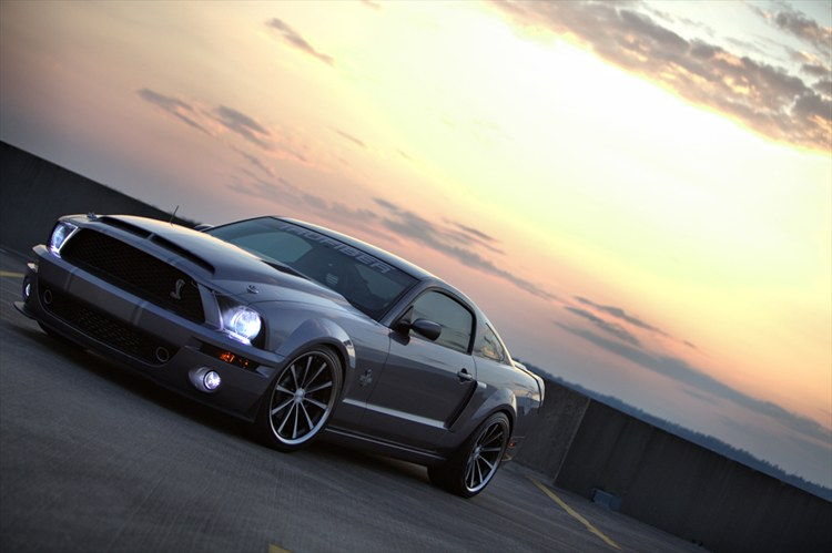 CutterWolf 2006 Ford Mustang 15807335