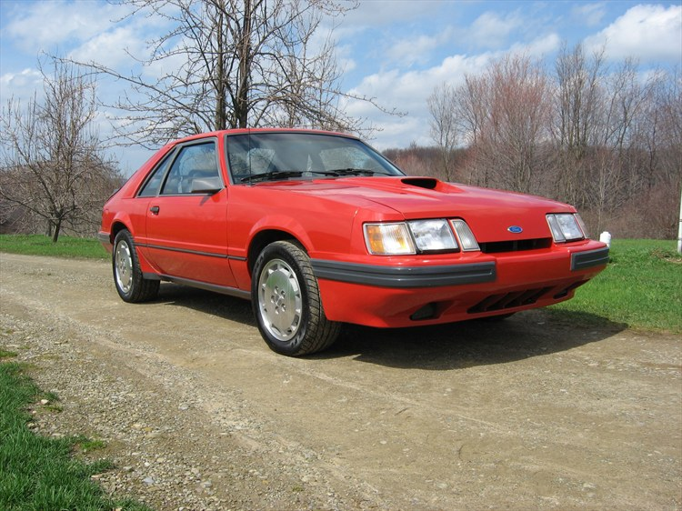 BodaciousLobster 1985 Ford Mustang