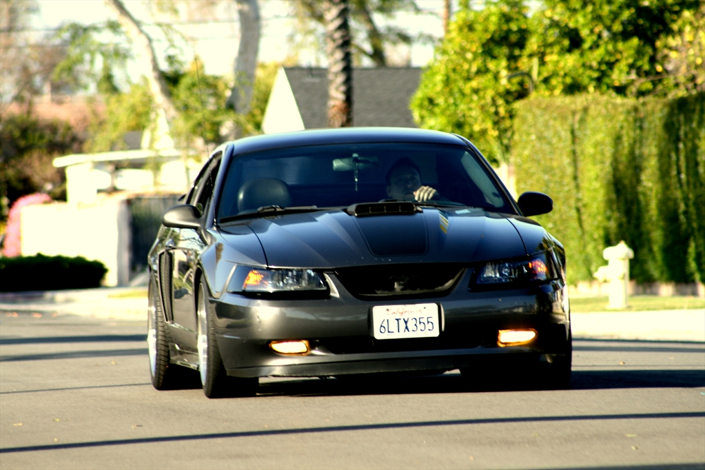 solaranp's 2003 Ford Mustang