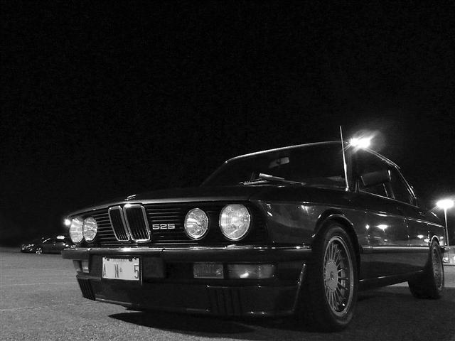 ALPINAMAN 1983 BMW 5 Series 18849867