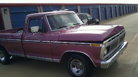 old school 1976 Ford F150 Regular Cab 18993488