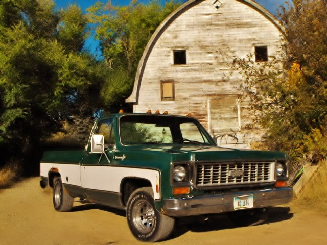 c10king73 1973 Chevrolet Cheyenne 15545413