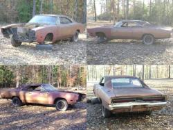 JoeyGowdy 1969 Dodge Charger