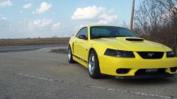 03yellowstang