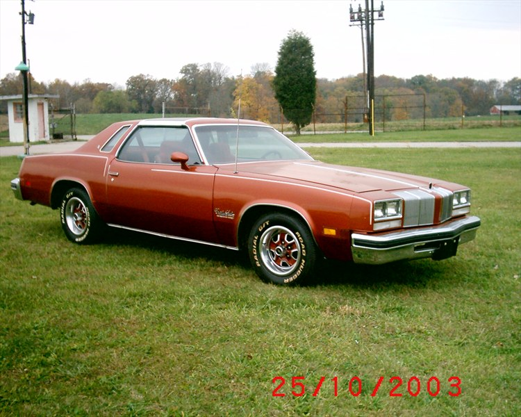 Firethorn77salon 39 s profile in dillsboro in for 77 cutlass salon for sale