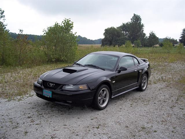 crc1792 2003 ford mustanggt deluxe coupe 2d specs photos. Black Bedroom Furniture Sets. Home Design Ideas