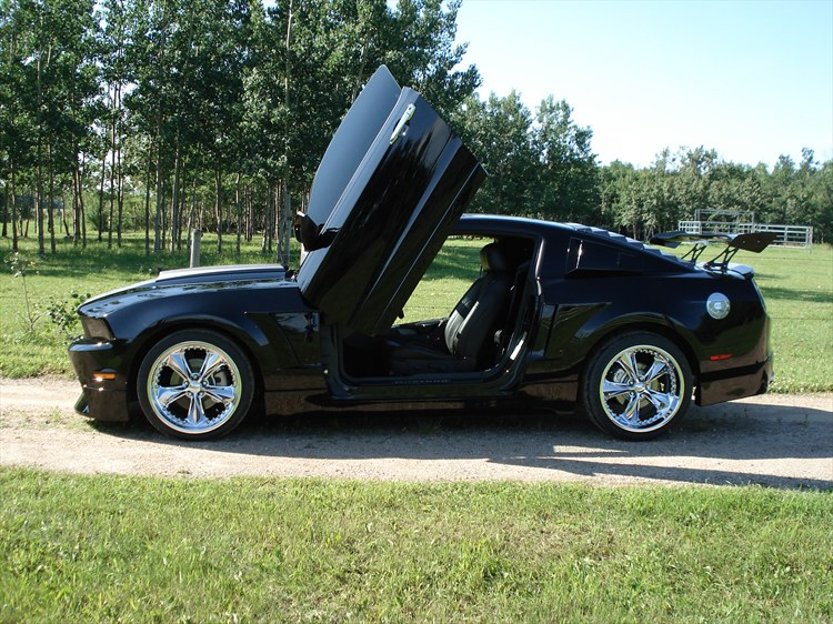 mcbottle 2010 Ford Mustang 19006651