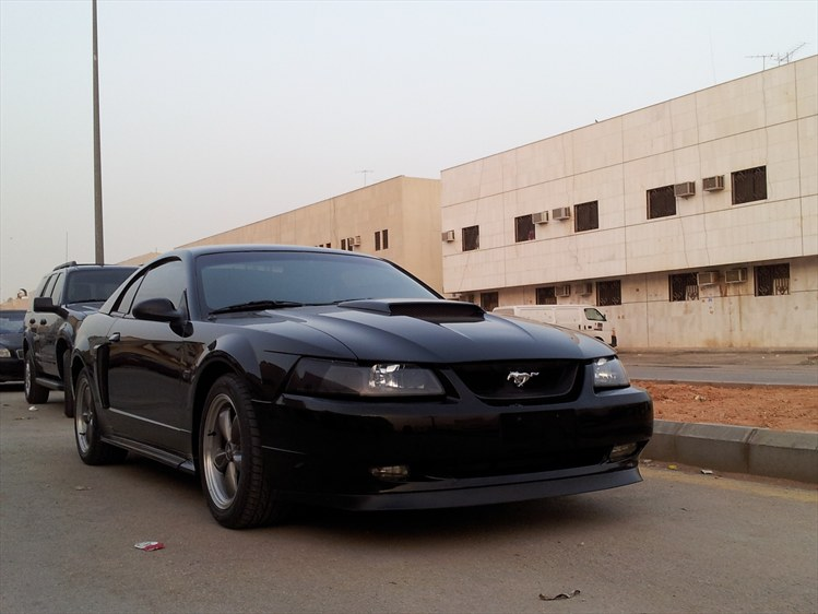 afalkico 2004 Ford Mustang post... - 17348811