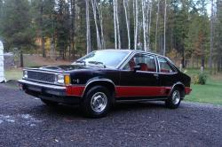peaksterx11 1980 Chevrolet Citation