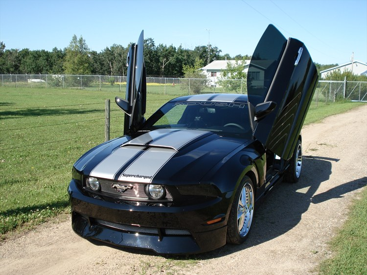 mcbottle 2010 Ford Mustang 19006585
