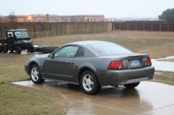 TreyB0 2004 Ford Mustang