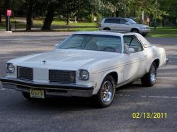 H/OCrazys 1975 Oldsmobile Hurst/Olds