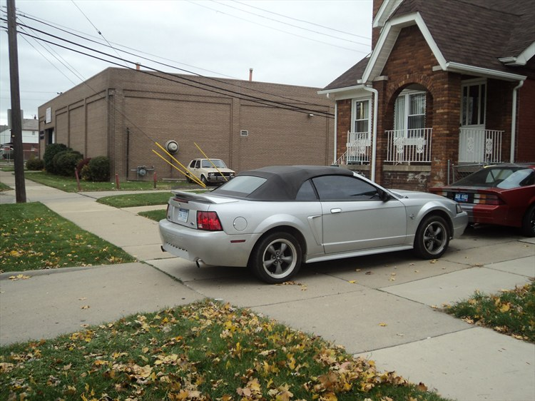 haider313's 1999 Ford Mustang
