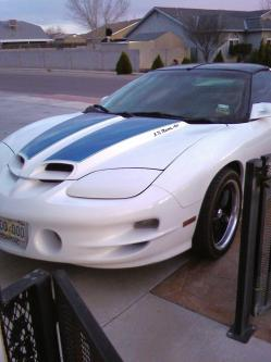PrincessBullDog 1999 Pontiac Trans Am