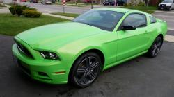 edsel475 2013 Ford Mustang