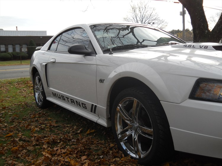 Another favredaddy04 2002 Ford Mustang post... - 15381951