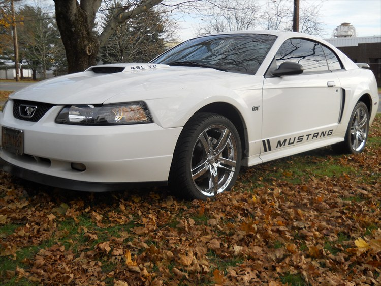 Another favredaddy04 2002 Ford Mustang post... - 15381966