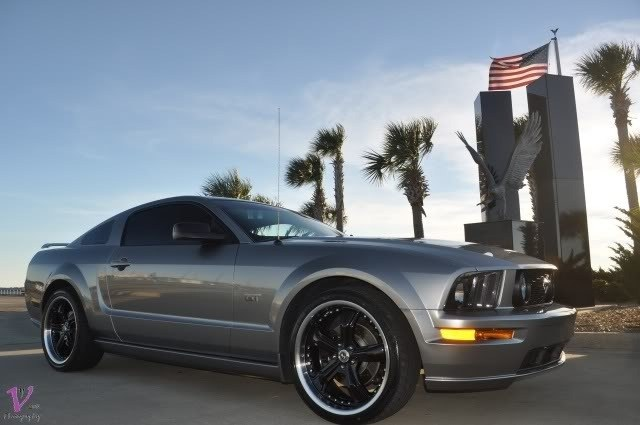Another 08GT4ME 2008 Ford Mustang post... - 15842995