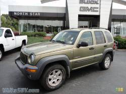 FamCars 2006 Jeep Liberty