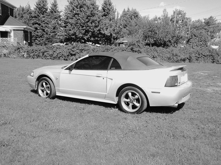 haider313 1999 Ford Mustang 18907739