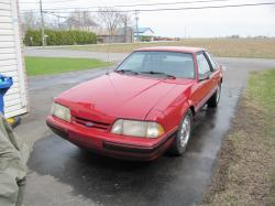 Bruno Roy 1988 Ford Mustang