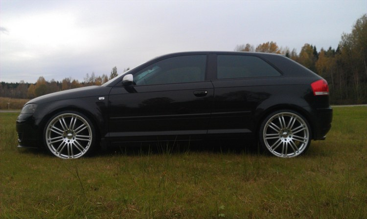 palmgren 2004 audi a3 specs photos modification info at cardomain. Black Bedroom Furniture Sets. Home Design Ideas