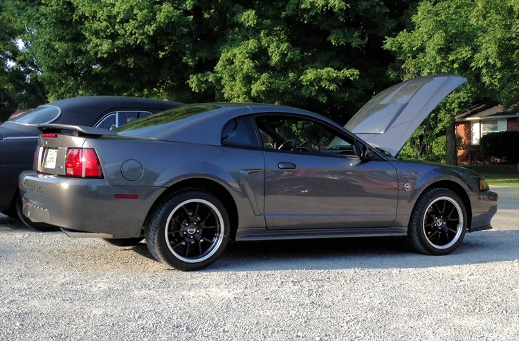 blissfulerin 2004 Ford Mustang 16283186