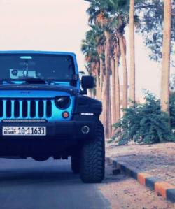 mrjeeep 2010 Jeep Wrangler