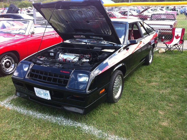Another TurboTurismo 1984 Plymouth Turismo post... - 16091245