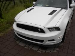 2_the_extreme 2014 Ford Mustang