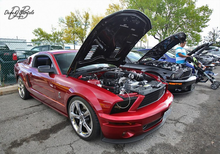 Another Condy26 2005 Ford Mustang post... - 16135379