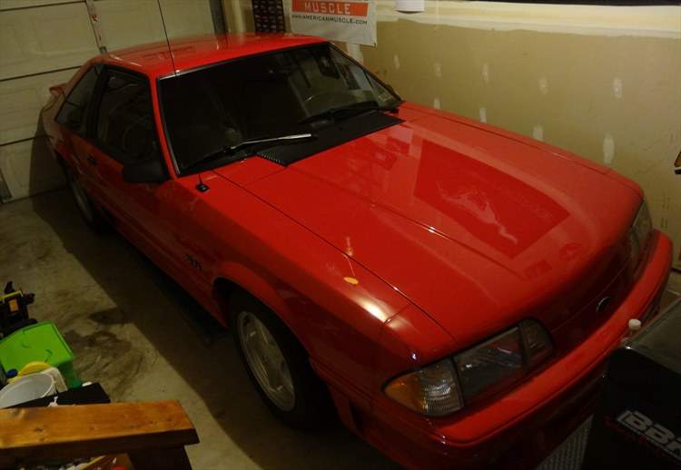 9redfox3 1993 Ford Mustang 16219313