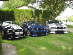 I built and owned all of these Venom Mustangs.