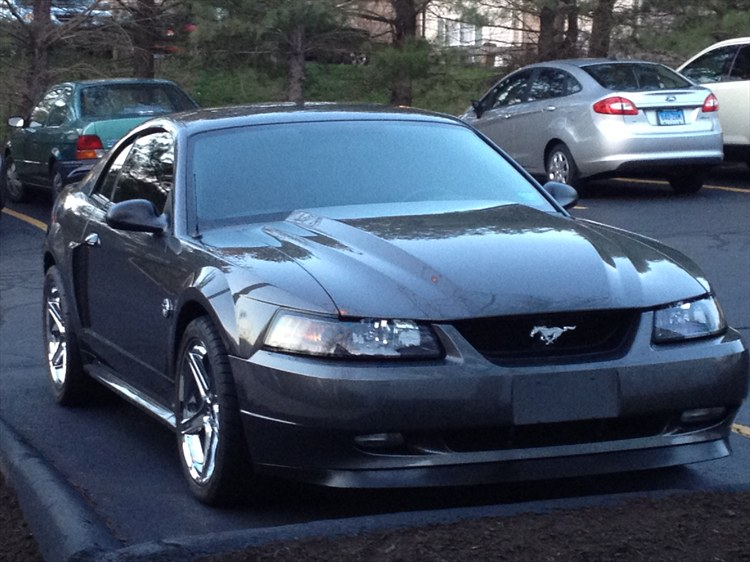Another Dseeger04 2004 Ford Mustang post... - 16270444