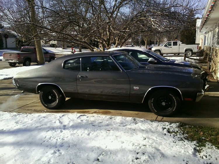 Another Horsetamer 1970 Chevrolet Chevelle post... - 16053663