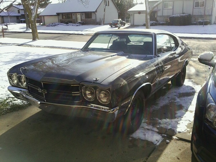Another Horsetamer 1970 Chevrolet Chevelle post... - 16053664
