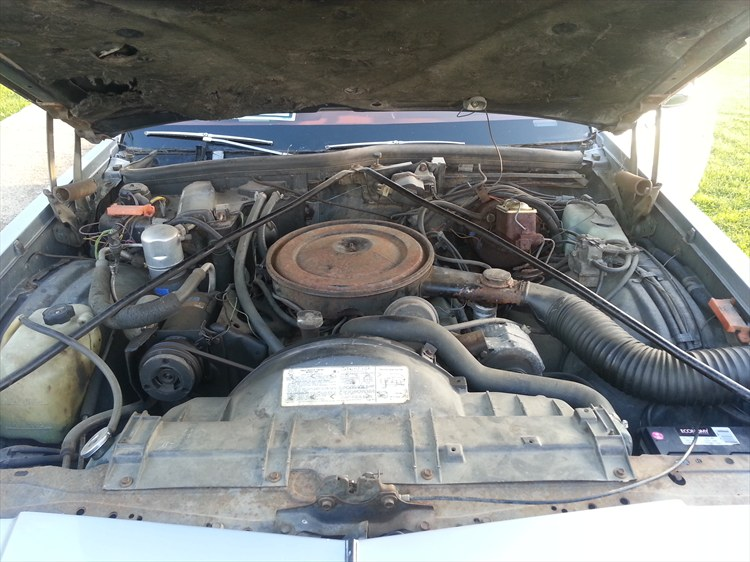 Olds 98 - 16302736